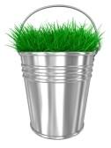 Травы надежнее биодобавок?