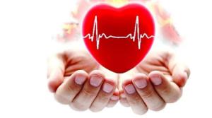 Инсульт и инфаркт. Народные рецепты профилактики и лечения.