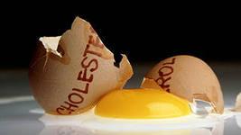 Вредный холестерин