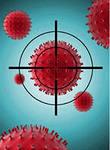 Как работает иммунитет человека.
