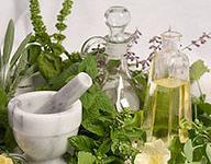 Лекарственные травы от простуды и гриппа.