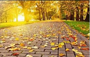 вес осенью